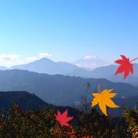 高尾山に登ろう!